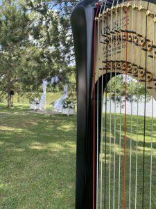 Harp Music Chicago