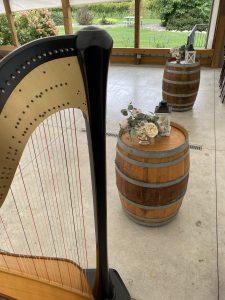Harp Player Peoria IL