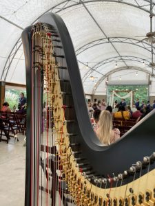 Peoria Wedding Music Harp