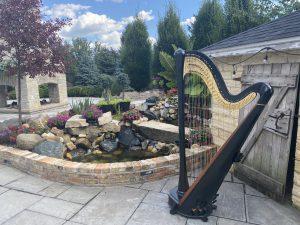 Wedding Harp Chicago