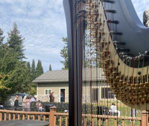 Harp Player Northern Wisconsin